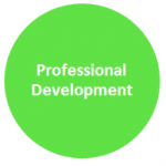 Design Principles: Professional Development